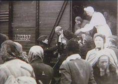 Danske busser og ambulancer ved Padborg Station i foråret 1945 under Bernadotte-aktionen Tidsperiode og årstal Datering: Mellem Marts 1945 og April 1945 - See more at: http://samlinger.natmus.dk/FHM/27700#sthash.6jJur3Wt.dpuf