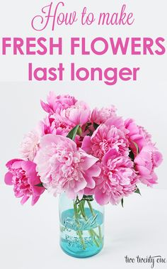 GREAT tips on how to make fresh flowers last longer!