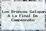 http://tecnoautos.com/wp-content/uploads/imagenes/tendencias/thumbs/los-broncos-galopan-a-la-final-de-campeonato.jpg Broncos. Los Broncos galopan a la final de Campeonato, Enlaces, Imágenes, Videos y Tweets - http://tecnoautos.com/actualidad/broncos-los-broncos-galopan-a-la-final-de-campeonato/