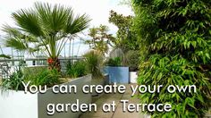 You can create your own garden at Terrace What is a Terrace Garden? Sometimes ago every peoples had plenty of space and they have their own garden ,but today not enough space in their houses, Now people have small home but does not matter if you have your own roof for gardening you enjoying fresh vegetables, fresh air and maintain the temperature. terrace gardening is one of them. see more...http://naturebring.com/blog/can-create-garden-terrace/