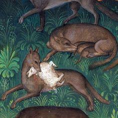 Wolves, Gaston Phoebus, Le Livre de la chasse, Paris ca. 1407 (NY, Morgan, MS M…