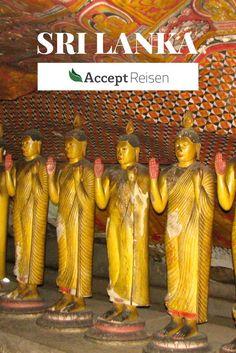 Sri Lanka Highlights - Das Beste aus Natur & Kultur dieser einmaligen Insel.