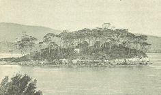 Deadman's Island - Port Arthur - Picture Taken in 1891 Van Diemen's Land, Port Arthur, Broken Promises, Dead Man, Historical Pictures, Tasmania, Genealogy, Prison, Trains