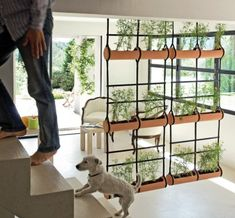 Love this! Teracrea hanging planter. Perfect for a unique room divider