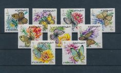 LE96402 Fujeira  insects bugs fauna butterflies fine lot MNH