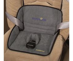 Potty -car seat protector!    http://images.esellerpro.com/2149/I/208/smDry-Seat.gif