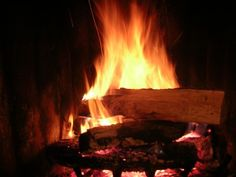 Best Firewood - What Type Of Wood Should You Burn?