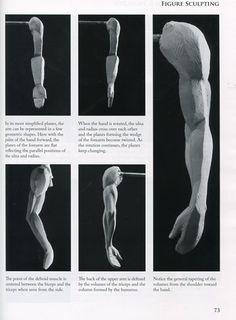 Risultato immagini per Book Figure Sculpting Volume I: Planes & Construction Techniques in Clay by Philippe Faraut Arm Anatomy, Human Anatomy Art, Anatomy Poses, Anatomy For Artists, Anatomy Study, Body Anatomy, Anatomy Drawing, Sculpture Techniques, Sculpture Lessons
