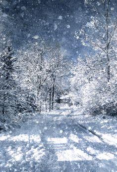 Winter road (Owen Sound, Ontario) by Linda Blake❄️cr.