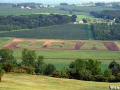 From my home town. Penn Yan NY will never forget Penn Yan, Ny Usa, Golf Courses, Finger Lakes, New York, Places, Forget, Pictures, Photos