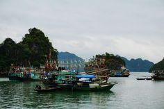 Squib Fisher - Halong Bay, Vietnam