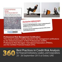 Best Practices in Credit Risk Analysis for Financial Institutions, Leaders and Corporations
