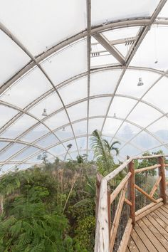 A Sustainable Hothouse GREENHOUSE IN THE BOTANIC GARDEN, UNIVERSITY OF AARHUS. Location: Aarhus, Denmark; firm: C.F. Møller Architects; photos: Julian Weyer, Quintin Lake