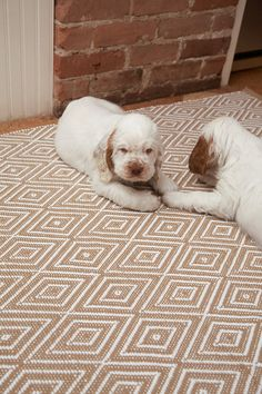 Dash and Albert Rugs Woven Diamond Khaki/White Rug - We have these rugs in our kitchen and bathroom. Indoor Outdoor Area Rugs, Outdoor Areas, Outdoor Decor, Types Of Color Schemes, Childrens Rugs, Dash And Albert, Small Closets, Modern Carpet, White Rug