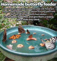New Diy Garden Crafts Homemade Butterfly Feeder 59 Ideas Garden Yard Ideas, Garden Crafts, Garden Projects, Fence Ideas, Garden Beds, Diy Crafts, Butterfly Food, Butterfly Feeder, Butterfly House