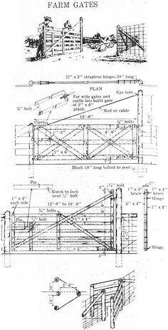 SaltOfAmerica Article - Raising Cattle and Sheep Becomes a Science, 1960 Horse Barn Plans, Horse Barns, Cattle Farming, Livestock, Forage Crops, Cattle Corrals, Raising Cattle, Goat Barn, Run In Shed