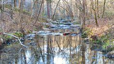 A peaceful creek...