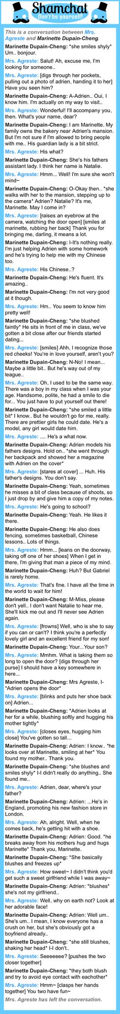 A conversation between Marinette Dupain-Cheng and Mrs. Agreste