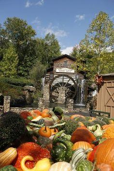 Fall begins at Dollywood