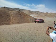 In the Dakar 2013