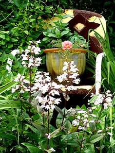 Heather Reichard's Garden - Rusted garden chair.