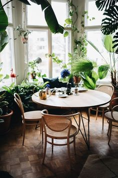 Interior Für eine Tasse Tee bei Tim Labenda To find the plants that will make this landscaping tip w Interior Plants, Interior And Exterior, Boho Apartment, Diy Home Decor Rustic, Interior Decorating, Interior Design, Decorating Tips, Decoration Table, Chair Design