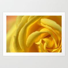 Orient Rose 2486 Art Print by metamorphosa - $22.88