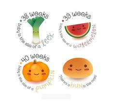 Items similar to Pregnancy Stickers - Belly Stickers - Baby Bump Weekly Stickers - Maternity photo prop - Scrap book pregnancy - Pregnancy Reveal on Etsy Pregnancy Tracking, Pregnancy Calculator, Pregnancy Signs, Pregnancy Photos, 28 Weeks Pregnant Belly, Alcoholic Drinks At Bars, Pregnancy Scrapbook, Maternity Photo Props, Baby Stickers