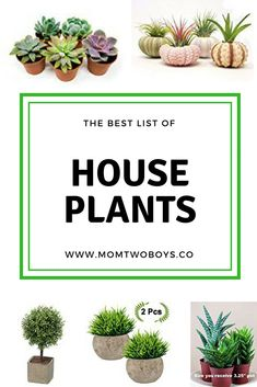 Great list of house plants!
