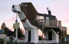 Une maison en bois en forme de chien avec son petit!
