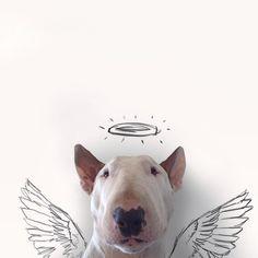 Rafael_Mantesso_Creates_Playfull_Illustrations_Around_His_Bull_Terrier_2014_03