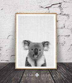 Koala Print sticker Animal noir et blanc Koala Bear par lilandlola