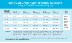 How Much Should I Feed My Puppy? A Complete Puppy Feeding Guide with Chart Puppy Feeding Guide, Puppy Feeding Schedule, Dog Feeding, Labrador Puppy Training, Dog Training, Training Classes, Training Plan, Training Equipment, Purina Puppy Chow