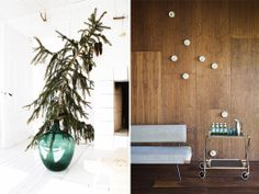 Small Christmas tree in LARGE vase. Perfect for a modern or minimal Christmas