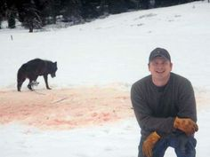"This beautiful black wolf was trapped, tortured, used as ""target practice"", and then finally shot to death.  U.S. Forest Service: Dismiss Josh Bransford on the basis of Animal Cruelty - sign this petition:  http://www.change.org/petitions/u-s-forest-service-dismiss-josh-bransford-on-the-basis-of-animal-cruelty?utm_campaign=share_button_modal_medium=facebook_source=share_petition_term=25487378"