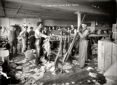 """Teddy Bear Skins: New York circa 1908. """"Cutting out teddy bear skins."""" 8x10 glass negative, George Grantham Bain Collection. Click to view full size."""