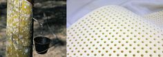 Purchase Natural Upholstery Materials