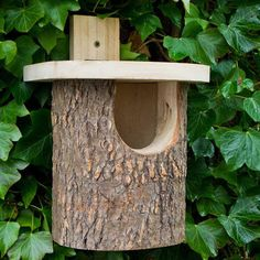 Natural Log Robin Nesting Box , A natural style suitable for or wagtails. One of the best ways of attracting birds to your is by providing sites where th. Homemade Bird Houses, Homemade Bird Feeders, Bird Houses Diy, Robins, Bird Tables, Bird House Feeder, Bird House Plans, Bird House Kits, Bird Boxes