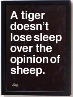 What if you're a sheep.....should you worry about the opinion of a goat? Should the tiger worry about what a lion thinks? TOO MANY POSSIBILITIES!