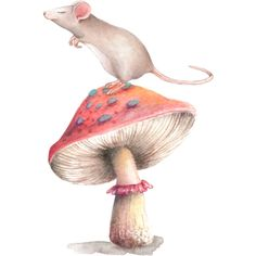 Mouse_on_mushroom.png ❤ liked on Polyvore featuring mice, animals and mushroom