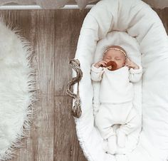 sweet sleeping babe in neutral clothes in a moses basket