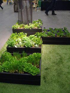 Bildresultat för trädgårdsland pallkragar