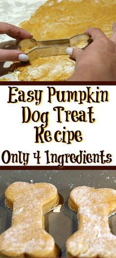 This easy Pumpkin Dog Treat Recipe is perfect to make for your dog! With only f… This easy Pumpkin Dog Treat Recipe is perfect to make for your dog! With only four ingredients they are also super quick to whip up a batch. Dog Cookie Recipes, Easy Dog Treat Recipes, Homemade Dog Cookies, Dog Biscuit Recipes, Homemade Dog Food, Dog Food Recipes, Doggie Cookies Recipe, Easy Dog Biscuit Recipe, Dog Treat Cookie Recipe