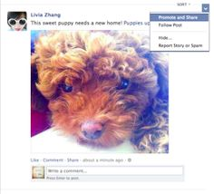 Now You Can Pay To Promote Your Friends' Facebook Posts... Even Without TheirPermission