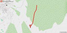 [Savoie] Liaison La Cachette vers Rock n'Arolles Piste de liaison permettant de rejoindre la piste rouge Rock n'Arolles depuis la piste noire de la Cachette, proposant ainsi une variante entre ces deux pistes DH pour varier les plaisirs. Retour vers la station d'Arc 1600.
