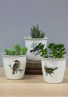 Peep On Chirping On! Herb Pot Set. Keep on gardening with this chipper herb pot set by Wild  Wolf! #white #modcloth