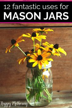 Check out these 12 creative uses for mason jars! Learn how to use them for everything from canning, drinking cups and storage in the kitchen to decor around the household and in the bedroom. Get ideas for making zero waste flower vases, luminaries, small candles, DIY beauty products, foods like spice mixes and pretty gift containers! #masonjars #masonjaruses #homemaking #homedecor #decorideas #flowers #diy #howto #easydiy #diydecor #makeityourself #doityourself #masonjarideas #canning… Kids Part, Serving Others, Black Eyed Susan, Practical Gifts, Glass Jars, Hygge, Reuse, Repurpose, Saving Money