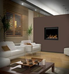 Napoleon Crystallo Gas modern fireplace