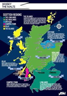 Scotch Malt Whisky Infographic