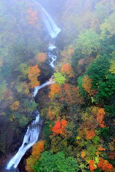 Photograph Autumn Valley /b by Koji  Yamauchi on 500px
